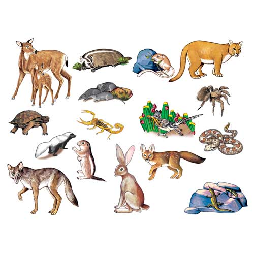 Chula Vista Books Desert Animals Felt Set